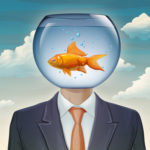 taming the goldfish brain